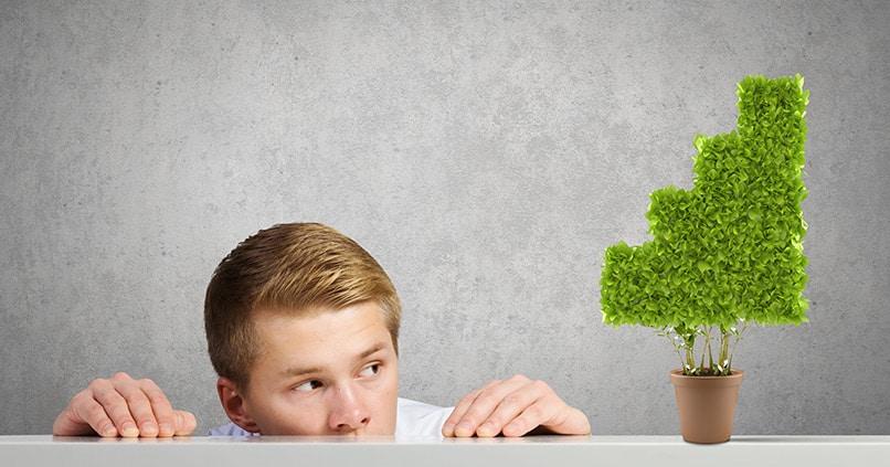 Grüne Investments – mehr als nur ein Nischenprodukt