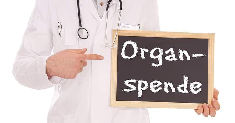 Organspende – wird Holland zum Vorbild für Deutschland?