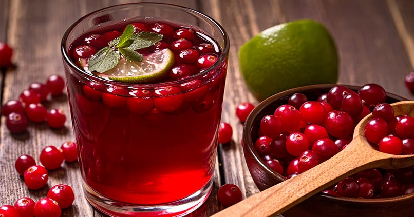 Cranberry - eine Heilpflanze mit Geschichte